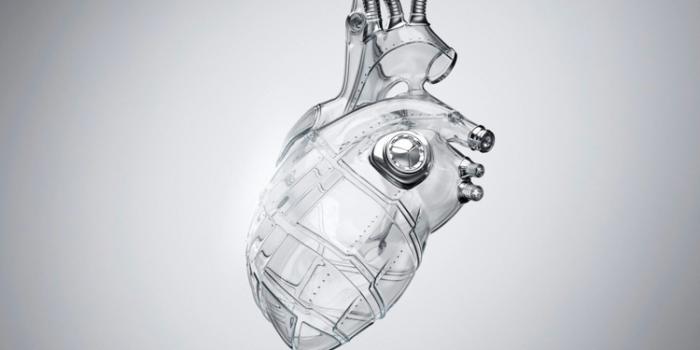 Crowdsourced Algorithm Could Transform Heart Disease Diagnosis