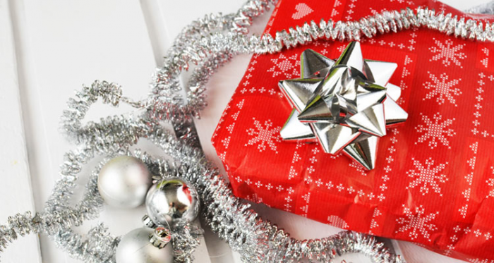 Holiday Gift Guide 2015: What to Get a Data Geek