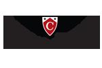 Capella University Logo on icrunchdata